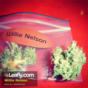 willie-nelson_825x550_6da2