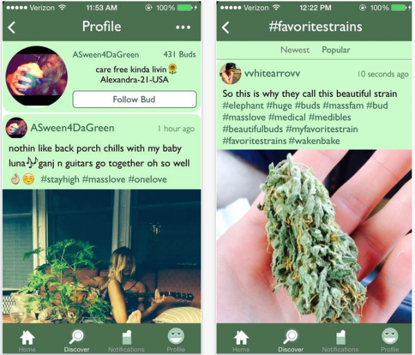 massroots_screenshot