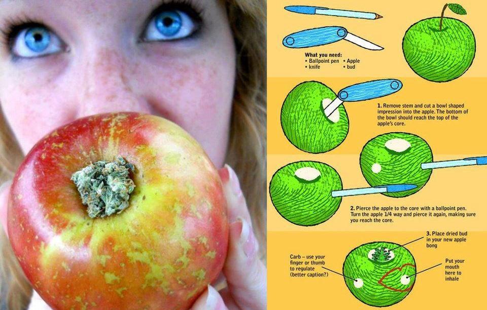 make-an-apple-pipe