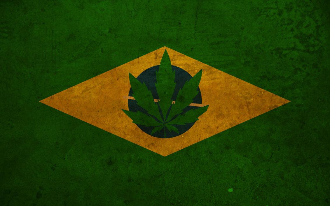 Livro narra a história da maconha no Brasil