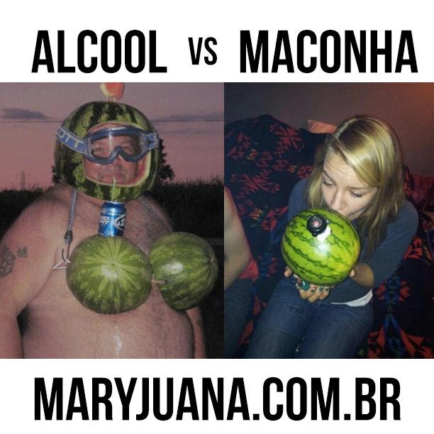 alcool-vs-maconha