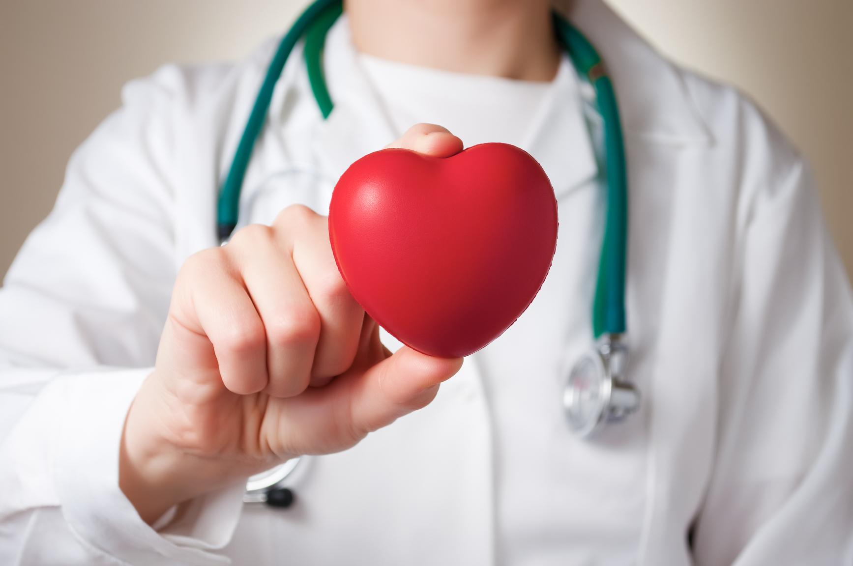 Canabinoides auxiliam no combate à fibrose cardíaca