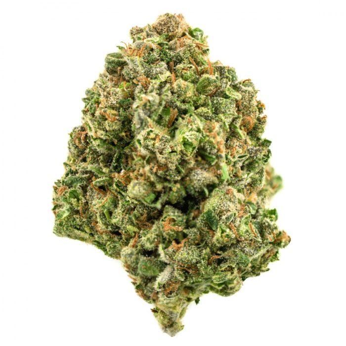 2-durban-poison_maryjuana