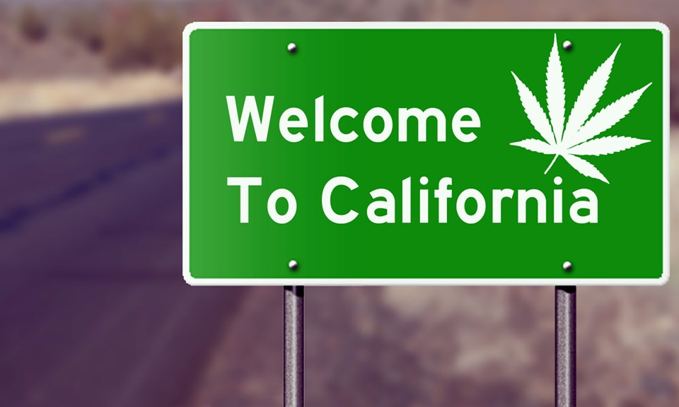 20 músicas para viajar na vibe da Califórnia