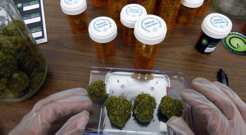 Resultado de imagem para uso medicinal da maconha