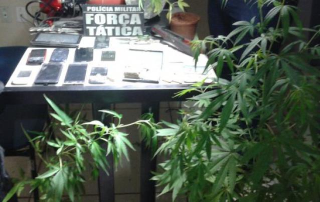 jornalixo_28_maryjuana