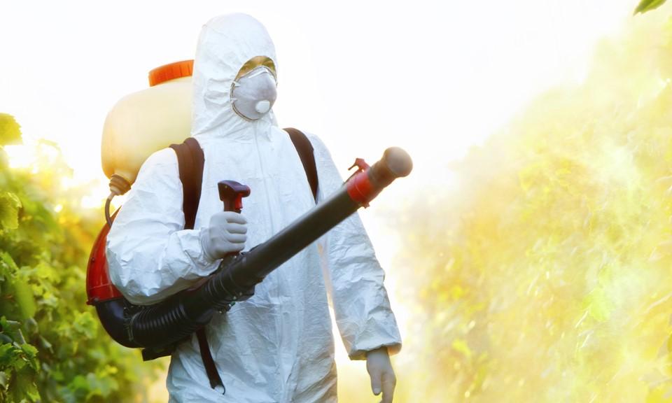 Conheça os principais defensivos utilizados para o controle de pragas no cultivo de maconha