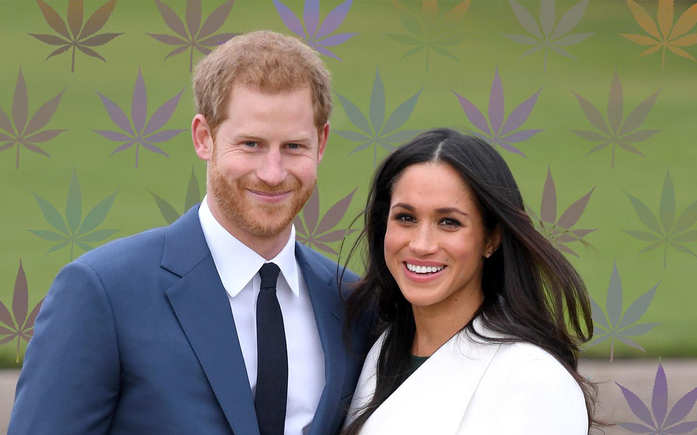 Linhagem de maconha é criada em homenagem a Meghan Markle e príncipe Harry