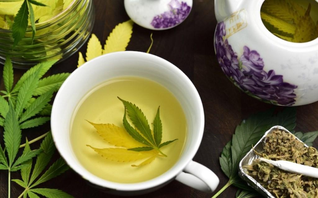 Aprenda a fazer chá verde com maconha