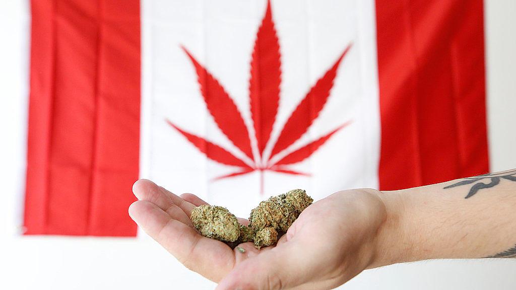 Conheça as regras para o uso de maconha no Canadá