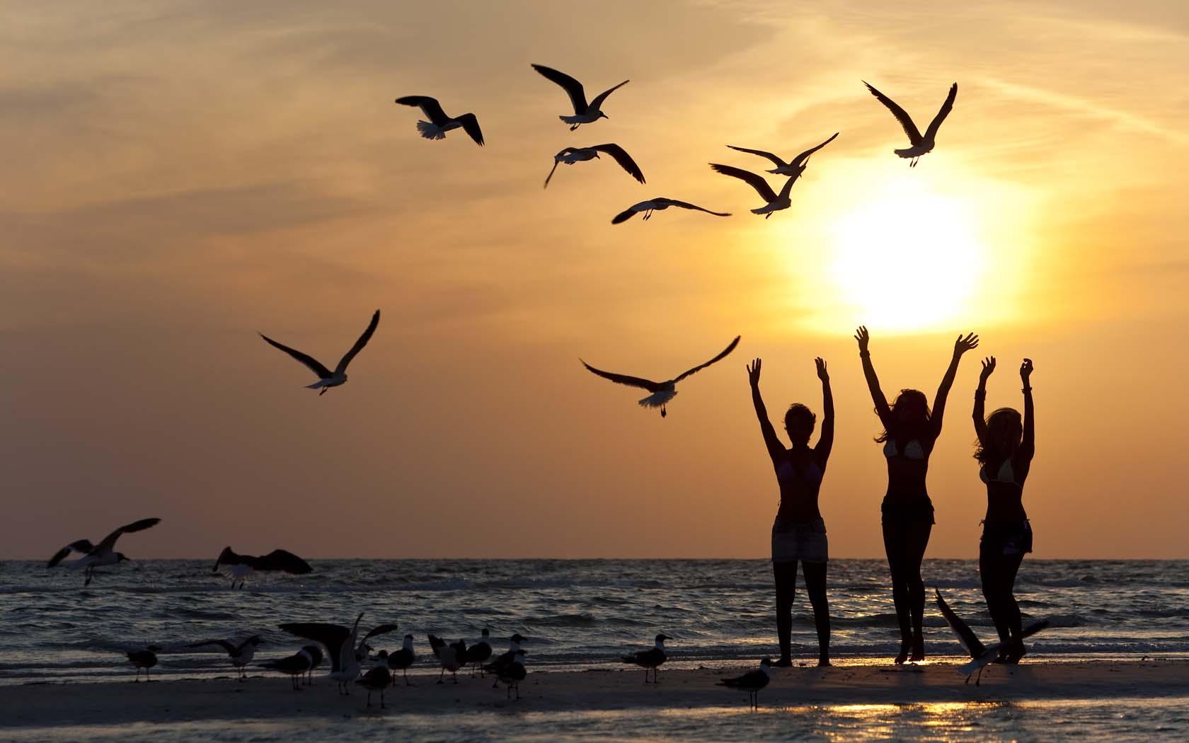 20 músicas para embalar seu fim de tarde na praia