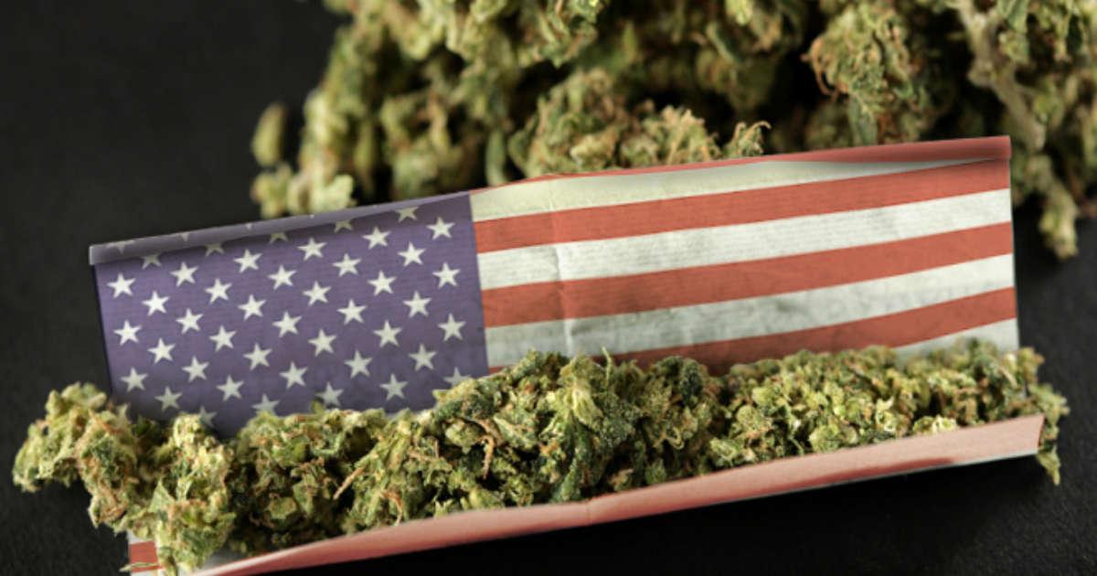 Congresso recebe projeto para descriminalizar a maconha nos EUA